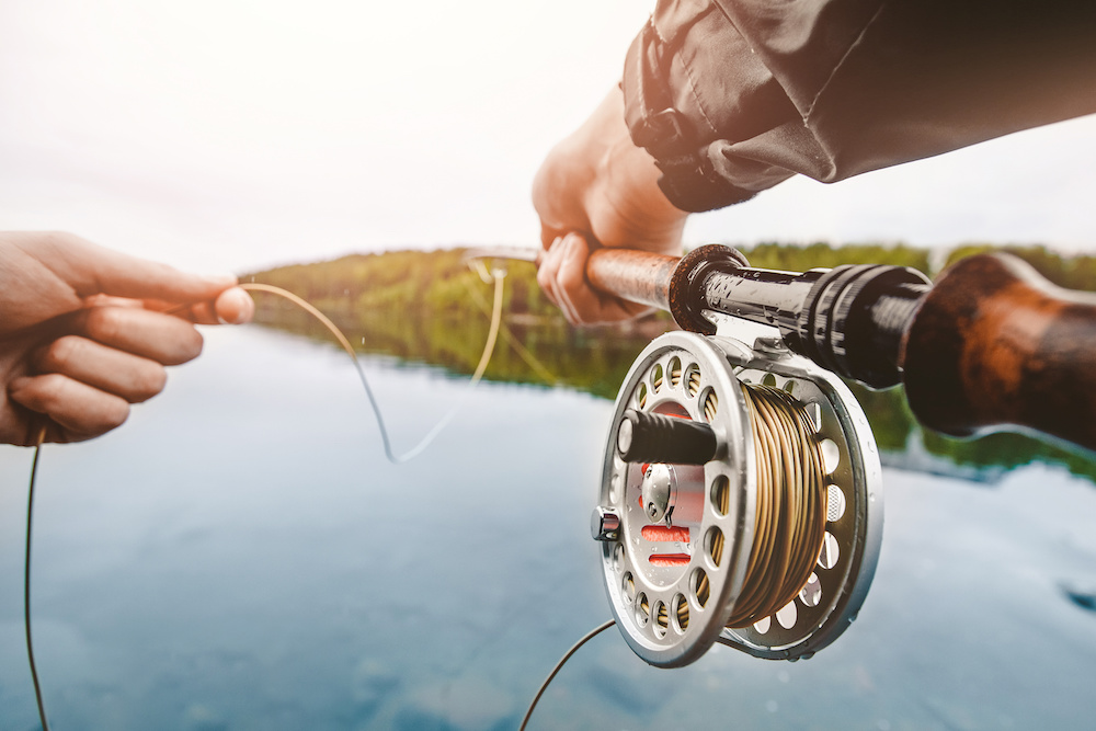 Best Fly Fishing Lines of 2019: Complete Reviews with Comparisons