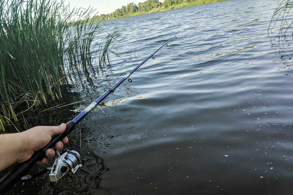 Best Telescopic Fishing Rods of 2020: Complete Reviews With Comparisons